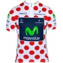 Maillot de ciclismo del campeón Tour Le Frande - Movistar